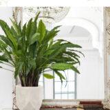 Настольное кашпо для цветов Idealist Lite Геометри, круглое, слоновая кость, Д30 В22 см, 15 л