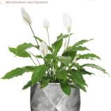 Настольное кашпо для цветов Idealist Lite Геометри, серебристое, Ш38 Д38 В30 см, 43 л