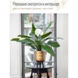 Напольное кашпо для цветов Idealist Lite Даймонд, золотистое, Д30,5 В46 см, 18.5 л
