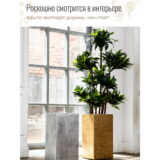 Напольное кашпо для цветов Idealist Lite Крисмас, квадратное, золотистое Д23 Ш23 В45 см, 23.8 л