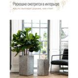 Напольное кашпо для цветов Idealist Lite Крисмас, квадратное, серебристое Д23 Ш23 В45 см, 23.8 л