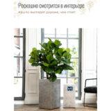 Напольное кашпо для цветов Idealist Lite Крисмас, квадратное, серебристое Д29 Ш29 В55 см, 46.3 л