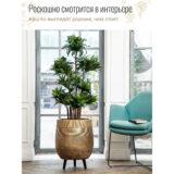 Напольное кашпо для цветов Idealist Lite Страйп, золотистое, Д44 В56 см, 61 л