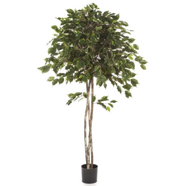 Искусственное растение Фикус Бенджамина зонтичный, высота 150 см