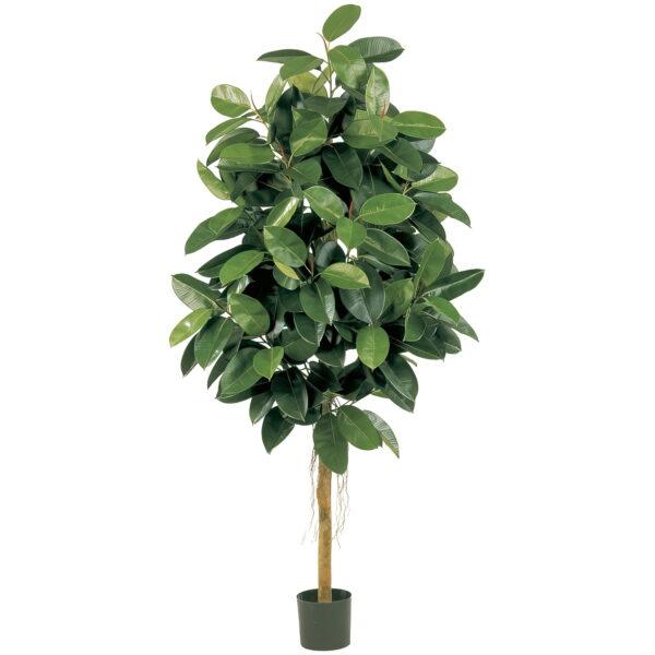 Искусственное растение Фикус Эластика зеленый, высота 150 см