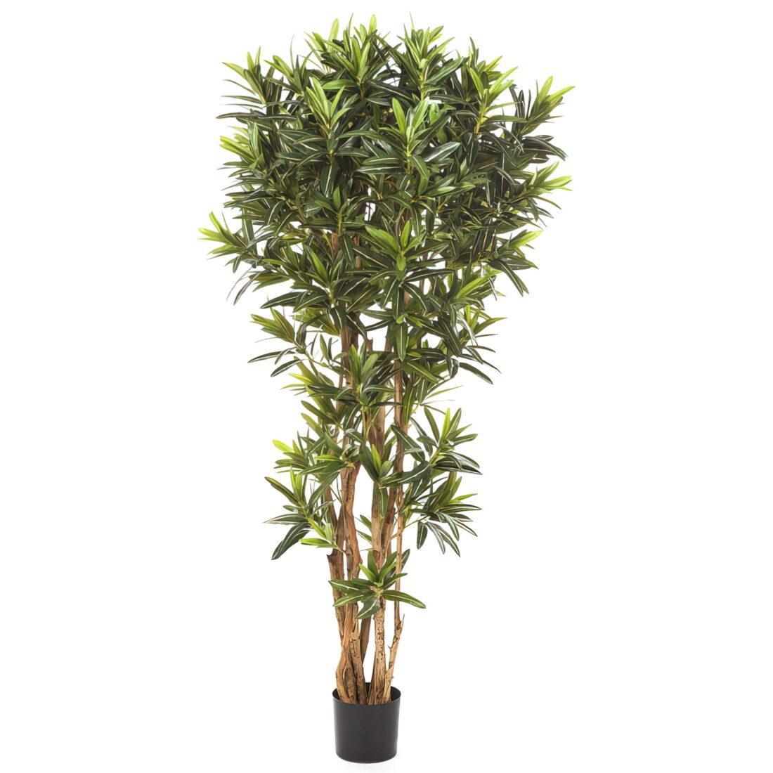 Искусственное растение Кротон Голдфингер Рефлекса, высота 150 см