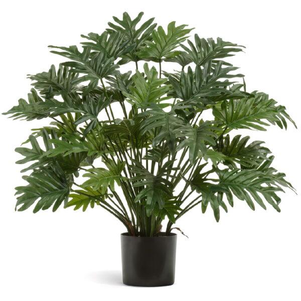 Искусственное растение Филодендрон Ксанаду, высота 75 см