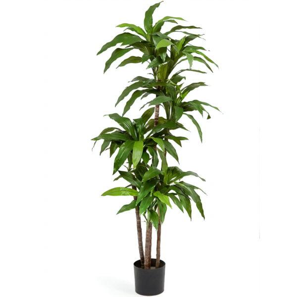 Искусственное растение Драцена Джанет Крейг зеленая, высота 150 см