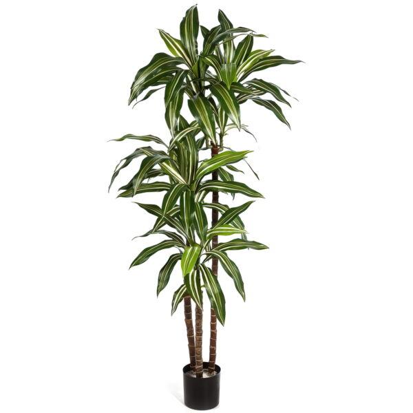 Искусственное растение Драцена Джанет Крейг бело-зеленая, высота 150 см